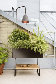 Plant stands for every garden - Buy online from Finnish Design Shop. Wide selection of contemporary design! Planter Boxes, Planters, Plant Lighting, Nordic Design, Contemporary Design, Outdoor Gardens, Window Boxes, Plant, Flower Boxes