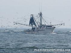 Shrimp Boat entering St. Augustine Inlet - Pictures of Vilano ...
