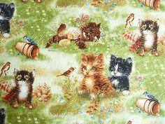 Kleine Katzen im Gras. Einfach herrlich. Das ist zu finden bei www.phantasiali.de