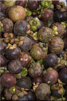 Purple Mangosteen มังคุด