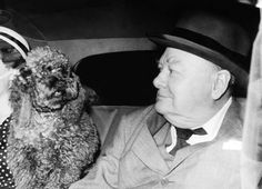 Winston Churchill was a Bulldog at spirit, but he has a real soft spot for his French miniature poodles. The former Prime Minister was left absolutely devastated when his pet pooch Rufus was hit by a car in 1947, he received a second poodle, which he called Rufus II. Here, Winston makes sure Rufus II (pictured) rides alongside him while the pair are chauffeured around London in circa 1953.
