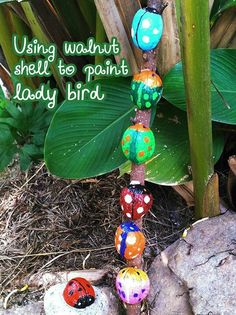Walnut shells-good craft for explaining the bereavement book Water-bugs and Dragonflies