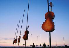 Champ harmonique à Marseille (Les Goudes)