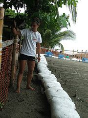 Volunteer Costa Rica Sea Turtles https://www.abroaderview.org #volunteerabroad #CostaRica #seaturtles @abroaderview