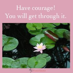 Have courage!   iComfort Village