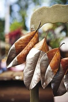 We are totally doing this!  Collected dried magnolia leaves dipped in muted antique gold paint then strung together.  We can play with the colors