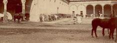 La corte ducale, ridotta a cortile per cavalli