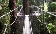 Admission to the Greenheart Canopy Walkway for One Person or a Family at UBC Botanical Garden (Up to 51% Off)