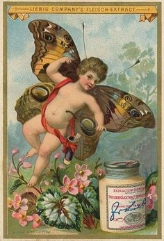 Butterfly Baby trading card issued by Liebig Extract of Beef Company. Vintage Labels, Vintage Ephemera, Vintage Cards, Vintage Postcards, Vintage Images, Decoupage, Vintage Butterfly, Butterfly Baby, Cherub