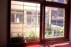 na minha janela