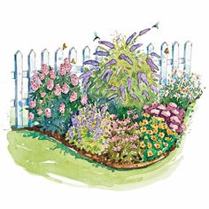 Plant this collection of beautiful, easy-growing flowers and your yard is sure to be filled with birds and butterflies.