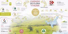 Grupo Argos, Ecopetrol, Pacific y Drummond preservan flora y fauna