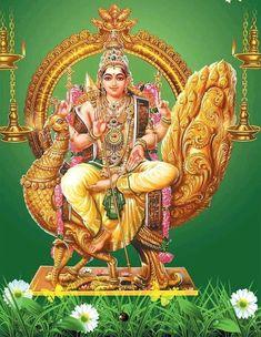 Kartikeya is found as a primary deity in temples wherever communities of the Tamil people live worldwide Yashoda Krishna, Shri Hanuman, Indian Gods, Indian Art, Lord Murugan Wallpapers, Spiritual Paintings, Lord Shiva Family, Lord Mahadev, Tanjore Painting