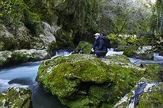 Landschaft, Griechenland, Fluss, Fluss, Tourist