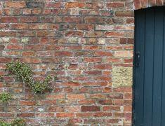 Camoufleer Die Lelijke Tuinmuur Vandaag Nog (8 Slimme Oplossingen)