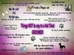 Things not to say to a dog groomer. Dying laughing cuz I've heard all of these! Dog Grooming Styles, Dog Grooming Shop, Dog Grooming Salons, Dog Grooming Business, Poodle Grooming, Creative Grooming, Puppy Cut, Dog Minding, Dog Salon