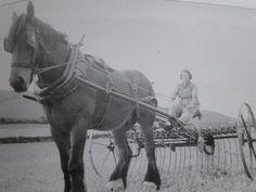 Land girl Working in the fields (by caro-jon-son, via Flickr)
