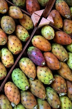 Sicilian Prickly Pears. We Calabrese like the Sicilians relish these delicious fruits. I remember going into my Nonna's (grandmother) fridge on hot days and grabbing handfuls of these! They were cold and so refreshing.