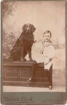 VICTORIAN CABINET CARD - WOLVERHAMPTON BOY WITH BLACK RETRIEVER DOG - CURLY COAT