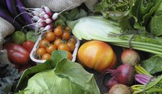 Veggies and the future of food system sustainability