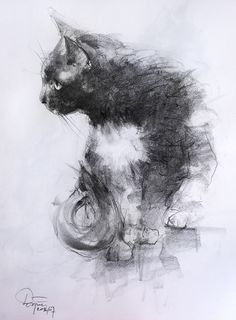 62946e061b4 cat pencil. Dariusz Zapała · Art - Dariusz Zapała