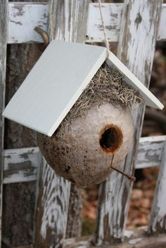 coconut bird house Rose Crafts, Diy Home Crafts, Coconut Shell Crafts, Diy Bird Toys, Bird Boxes, How To Attract Birds, Garden Ornaments, Little Birds, Bird Feeders