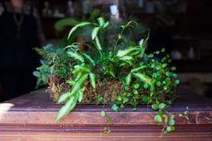 3 easy garden DIYs straight from the pros. Photos by Anna-Alexia Basile.