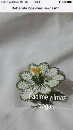 H Needle Lace, Crochet, Lace, Hand Embroidery, Ganchillo, Crocheting, Knits, Chrochet, Quilts