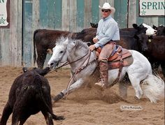 Tykes Silver Pistol All The Pretty Horses, Beautiful Horses, American Quarter Horse, Quarter Horses, Therapeutic Horseback Riding, Cutting Horses, Giant Animals, Cowboy Pictures, Reining Horses