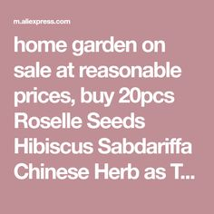 home garden on sale at reasonable prices, buy Roselle Seeds Hibiscus Sabdariffa Chinese Herb as Tea Flower Bonsai Plant DIY Home Garden from mobile site on Aliexpress Now! Flower Tea, Flower Pots, Flowers, Chinese Herbs, Store Coupons, Bonsai Plants, Blooming Plants, Outdoor Plants, Hibiscus