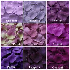 13 Shades of Purple Silk Rose Petals for your wedding. #purple #silkrosepetals #purplewedding
