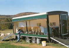 Mobile goat milking parlor (Goats on the Go!  Can you imagine taking this to a show?