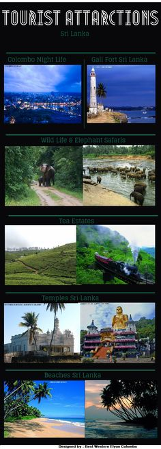 This infographic describes about tourist attractions in Sri Lanka