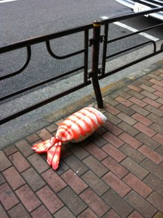 sushi trying to get away!