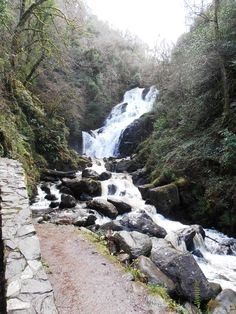 Torc Waterfall near Killarney,Co. Amazing Places, Wonderful Places, Little Island, Emerald Isle, Beautiful Waterfalls, Going Home, Ireland Travel, British Isles, Vacation Ideas