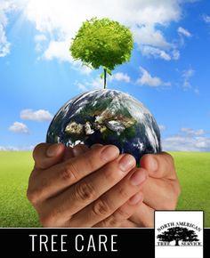 http://www.kudzu.com/m/North-American-Tree-Service-733827
