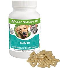 Only Natural Pet GI Support Digestive Support Supplement Probiotic Formula Ideal For Dogs or Cats With Poor Digestion Food Allergies or Bowel Concerns 120 Capsules * Check this awesome product by going to the link at the image. (This is an affiliate link) Joint Supplements For Dogs, Food For Digestion, Cardiovascular Health, Cat Health, Food Allergies, Dog Food Recipes, Your Pet, Pet Supplies