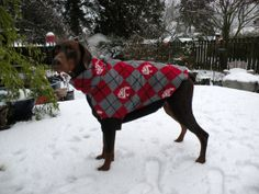 Dog Coats for Big Dogs by AmyableArt on Etsy, $42.00