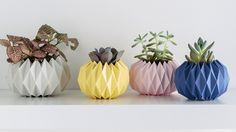 Looking to add a bit of flair to your household plants? These origami planter covers are made in five simple steps.
