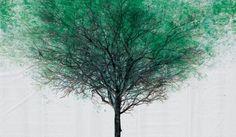 L'Agence de publicité DDB. Ils ont créé une toile blanche énorme et l'ont placée à 132 intersections dans 15 villes en Chine. Ils ont versé de la peinture verte sur chaque extrémité des trottoirs afin que les passants laissent leurs traces lors de leurs passages sur la toile. L'agence BBD estime à plus de 3,92 millions de personnes qui ont contribué à cette œuvre.