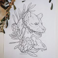 Hyena & some African proteas.  Trying to do more just-for-fun drawings this year & wanted to start with my favorite animal!