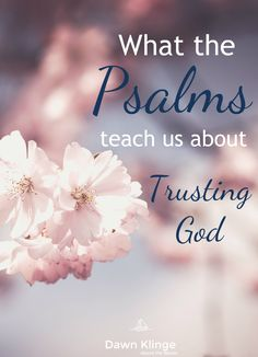 The Psalms were created for worship.  They're a collection of songs and poems that demonstrate a full range of honest emotions and show what a relationship with God looks like.  Most, but not all, of the Psalms, were written by David.  We can learn a lot about the attributes of God from these verses