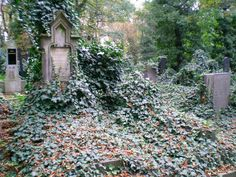 Today an unique picture of the tombstone in a cemetery in #Prague. Well, #Podlasie loves the capital city of the #Czech Republic.