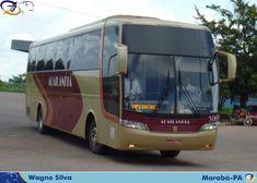 FOTOS  ONIBUSALAGOAS: AÇAILÂNDIA  3069