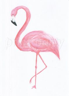 Hey Flamingo Watercolour Art Print by PrintPartyPeople on Etsy