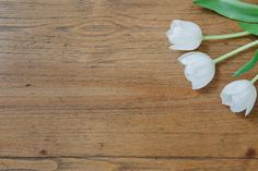 White Tulips on Wood Table by Bella Love Letters on Creative Market