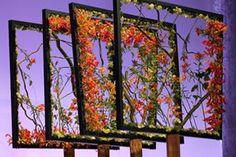 raffles international floristry academy - Google Search