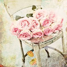 Love the roses and old metal chair.