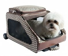 airline dog carriers