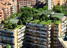 Qué son los techos verdes, ventajas y desventajas. #techosverdes #cubiertasvegetales #techovivo #eficienciaenergética
